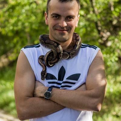 Евгений Задворных